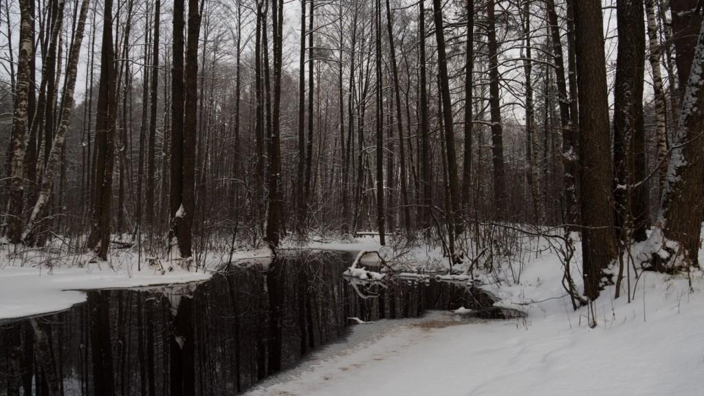 Могучая речка Шитка
