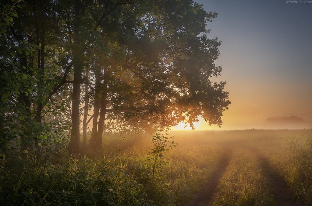 Немного воспоминаний о свежести летнего утра 02
