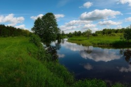 Река Судогда недалеко от деревни Лаврово, начало лета