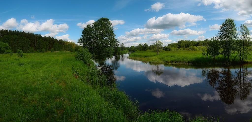 Река Судогда недалеко от деревни Лаврово, начало лета, Судогодский р-н
