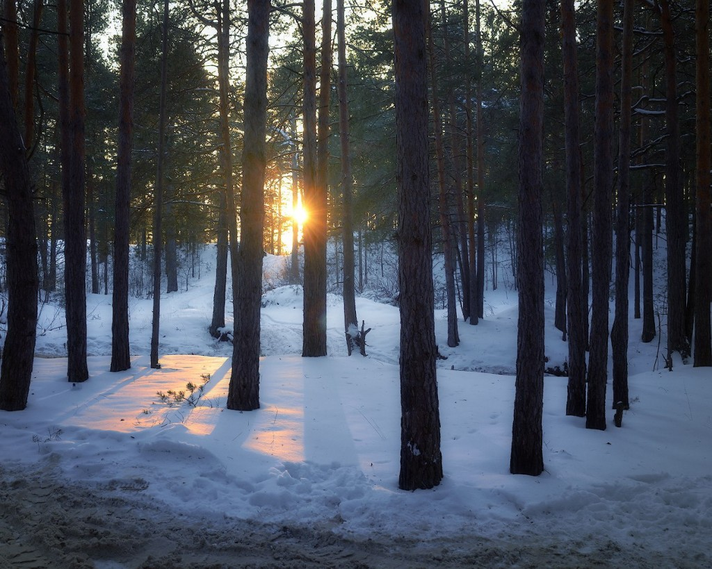 Солнце на час показалось... Судогодский район