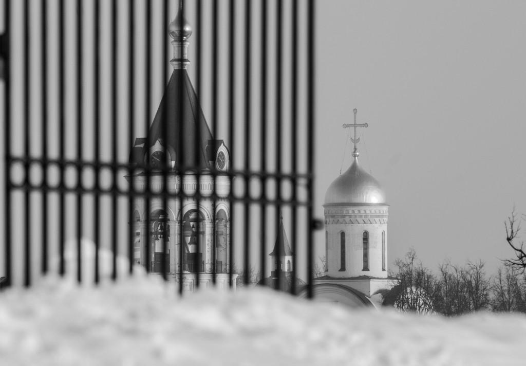 Владимир, начало февраля (2017) 03