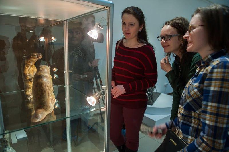 Выставка «Пластика живого» в Музее природы Владимира 03