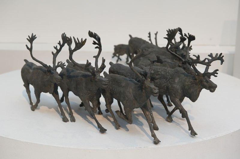 Выставка «Пластика живого» в Музее природы Владимира 04