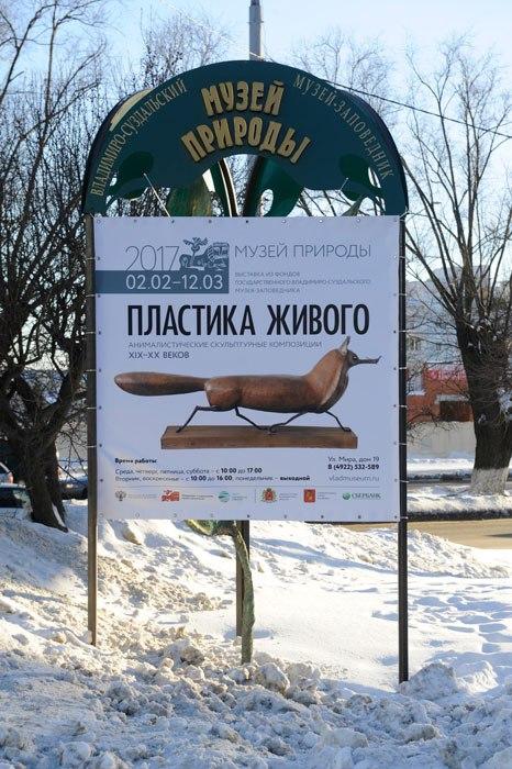 Выставка «Пластика живого» в Музее природы Владимира 06