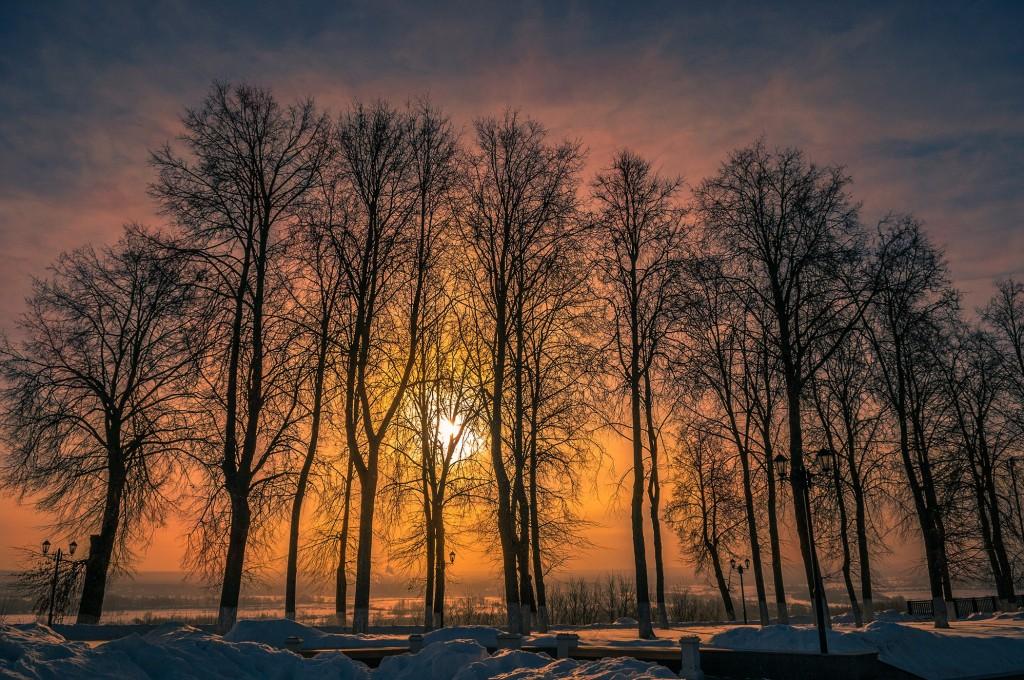 Морозный февраль-II 04