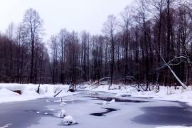 Река Нерехта, пос. Мелехово ковровского район