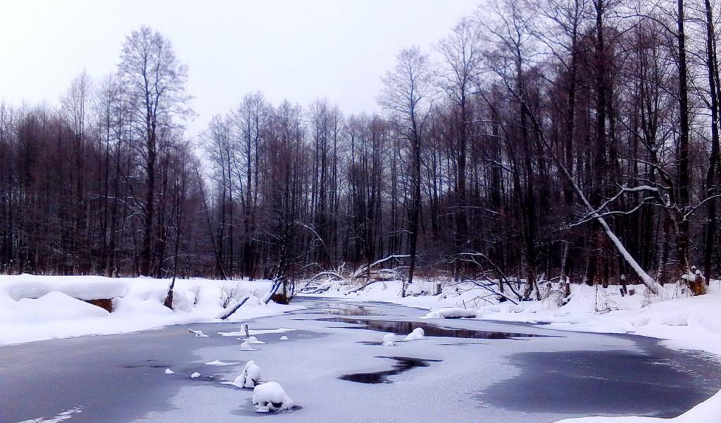 Река Нерехта, пос. Мелехово ковровского район 01