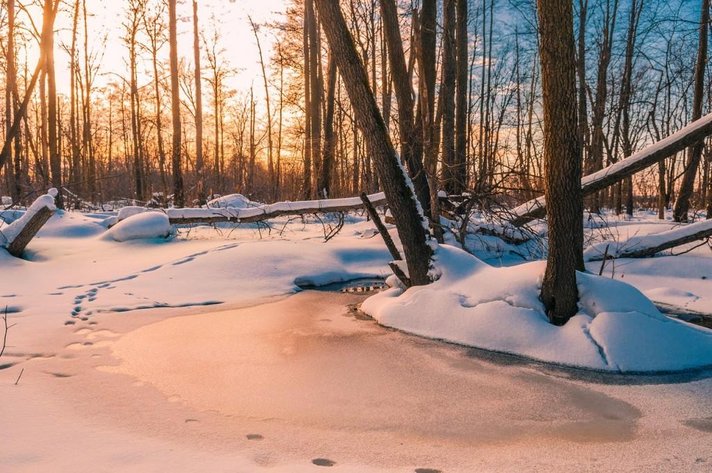 Февральский закат (в загородном парке Владимира) 04