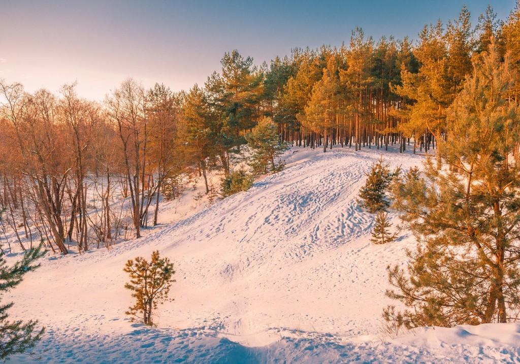Февральский закат (в загородном парке Владимира) 09
