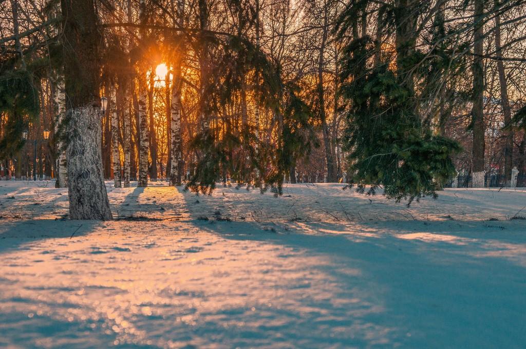 Февральское солнце во Владимире 08