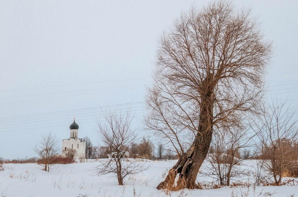 Февральское. Церковь Покрова На Нерли 06