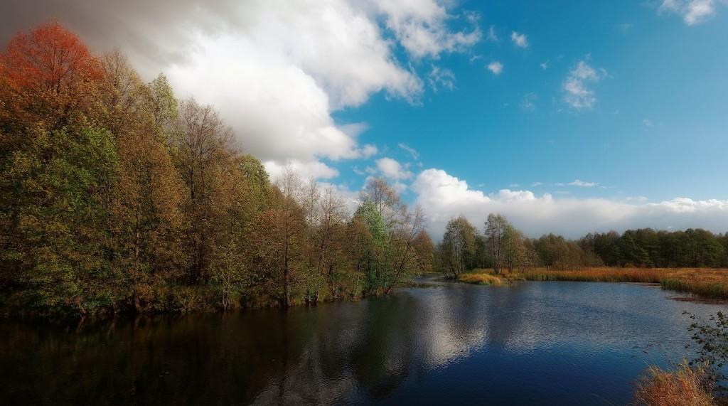 река Судогда в окрестностях деревни Башево, Судогодский р-н