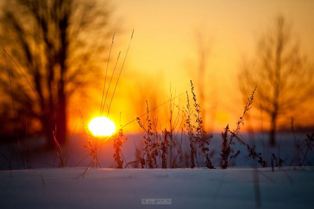 2017.02.07, церковь Покрова На Нерли на закате 03