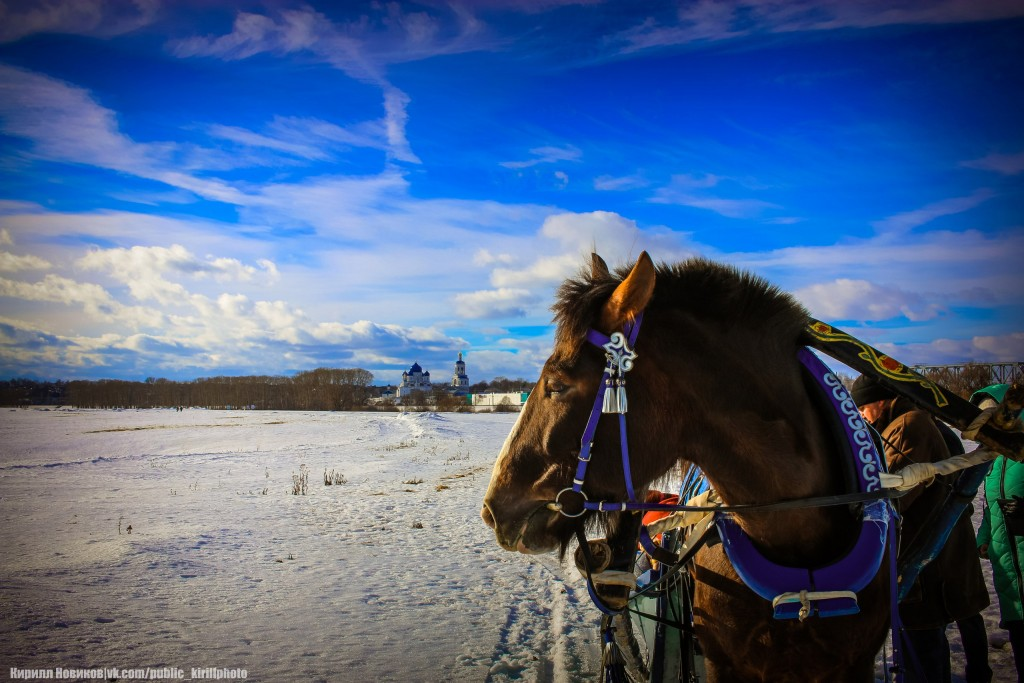 Боголюбовский луг и церковь Покрова на Нерли в последние, солнечные февральские дни уходящей зимы 08
