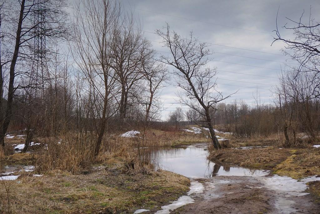 Весна во Владимирской деревне 08