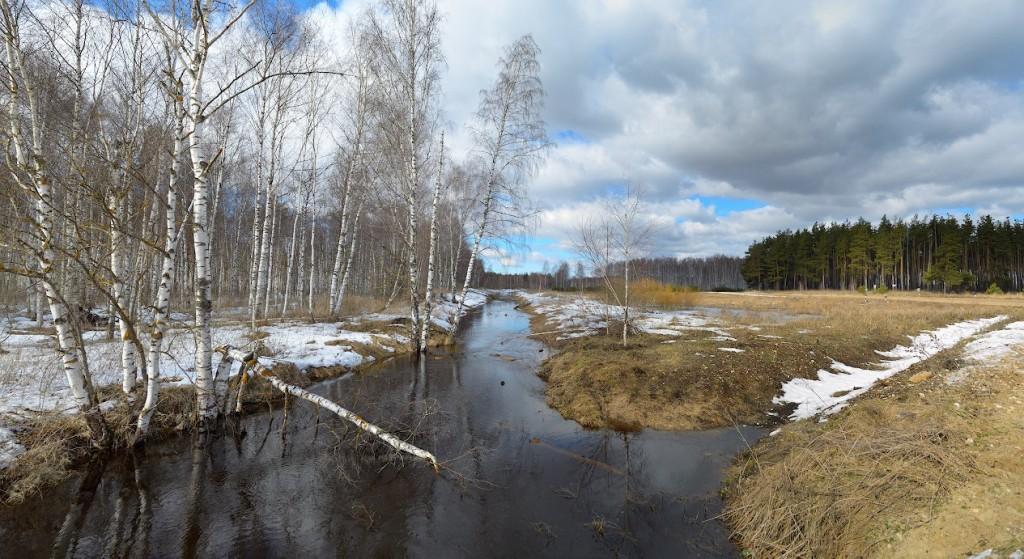 Камешковский р-н, недалеко от поселка Мирный