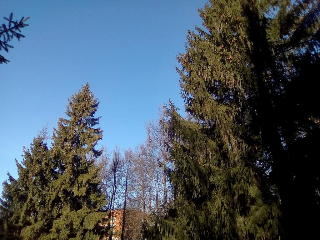 Солнечный день в Вязниках 03