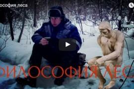 Прогулка по зимнему лесу Меленковского района