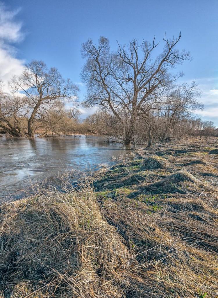 Апрельский день на реке Серой
