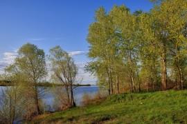 Весенние пейзажи Муромского района
