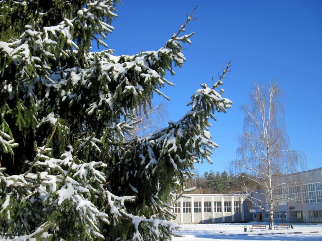 Вязники после первоапрельского снегопада 01