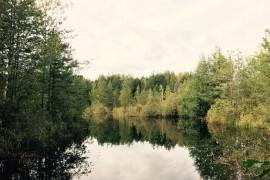 ЕГОРОВО ОЗЕРО, рассказ Владимирского писателя