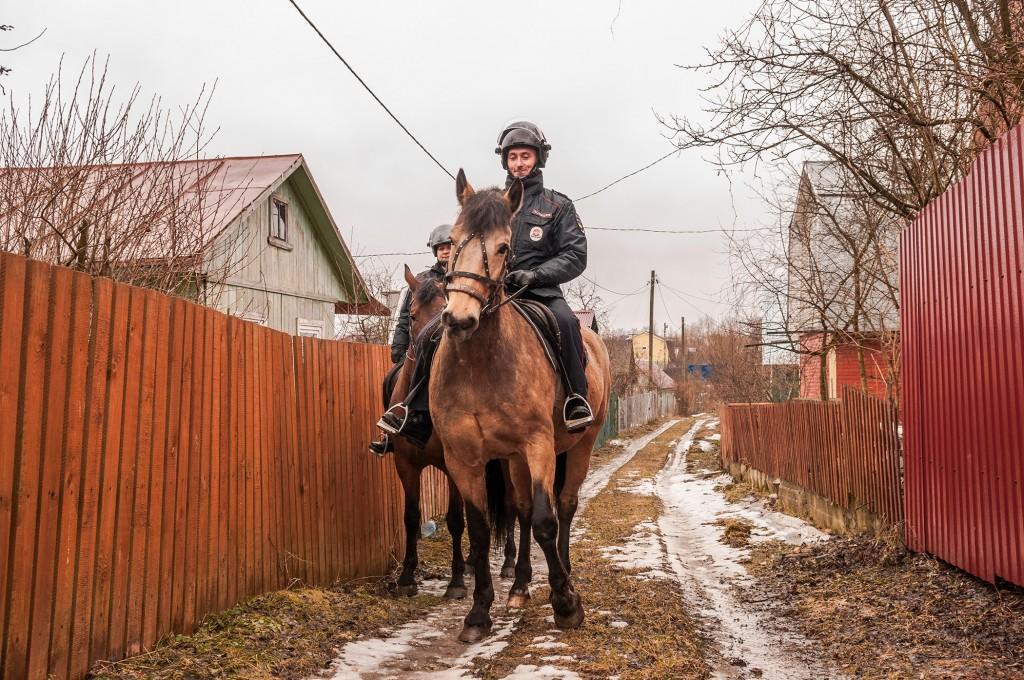 Конная полиция, патрулирование СНТ (апрель, Владимир) 04