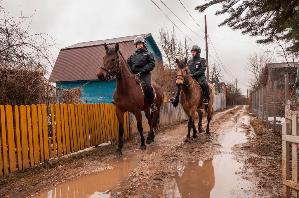 Конная полиция, патрулирование СНТ (апрель, Владимир) 06