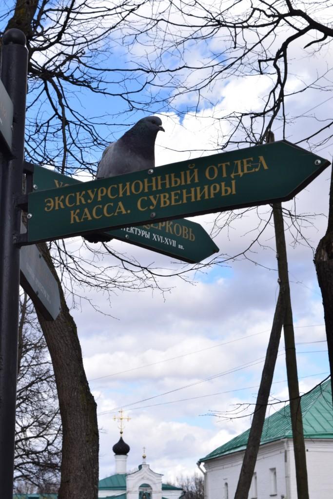 Прогулка по Александрову. Весна 01