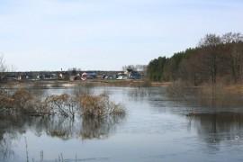 Разлив на речке Нерехте у деревни Погост, Ковровский район
