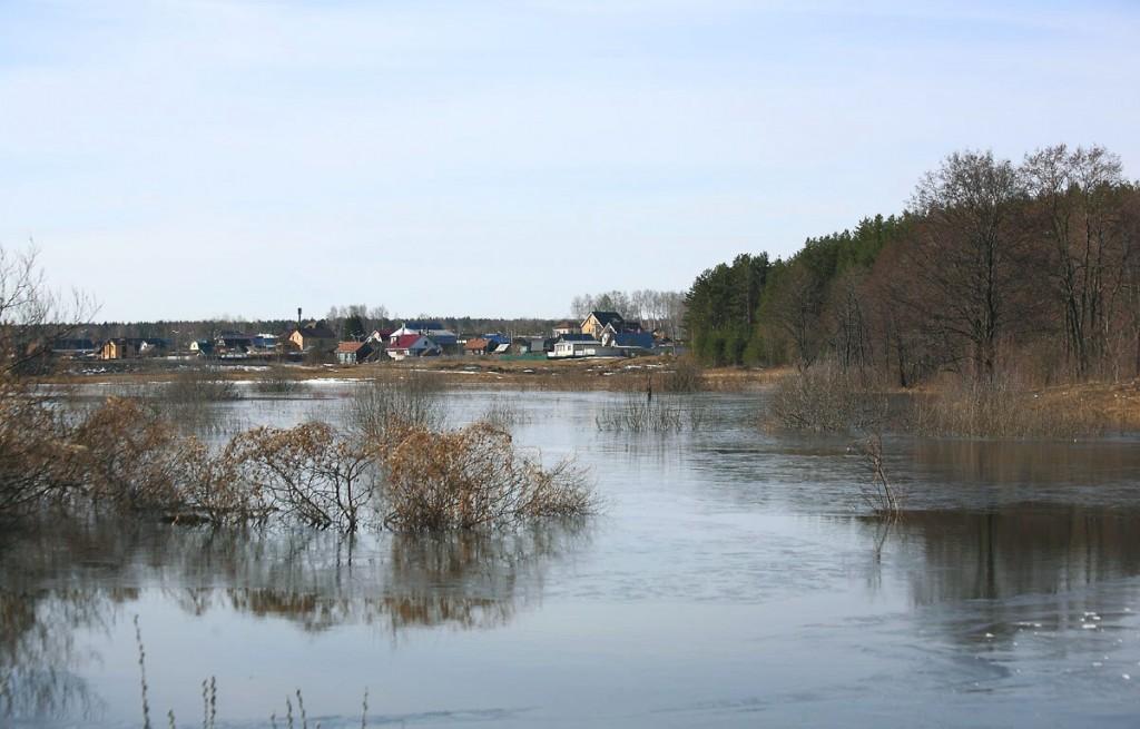 Разлив на речке Нерехте у деревни Погост, Ковровский район 01