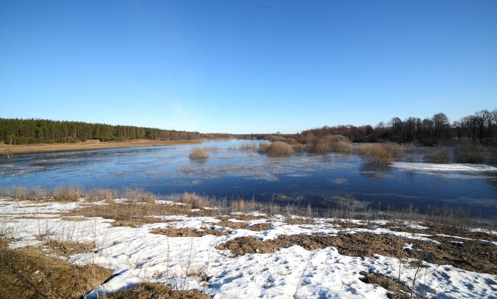 Разлив на речке Нерехте у деревни Погост, Ковровский район 02