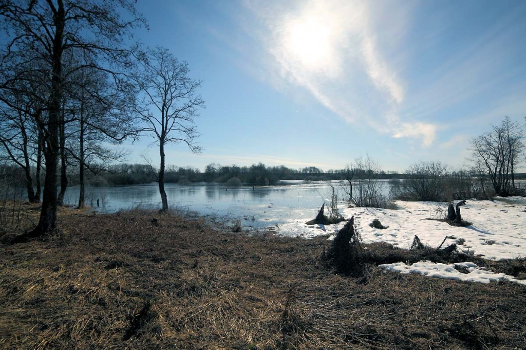 Разлив на речке Нерехте у деревни Погост, Ковровский район 03