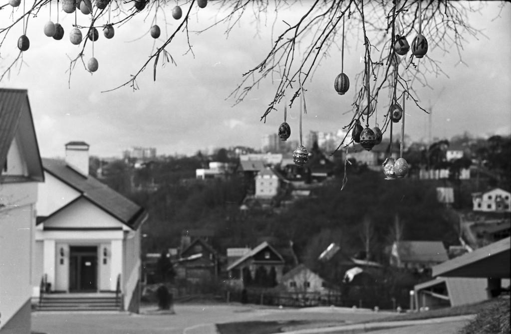 Современный (апрель 2017) Владимир на черно-белой пленке 01