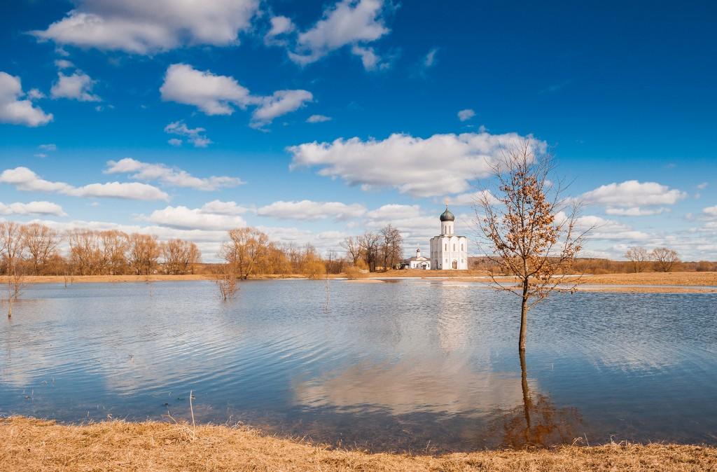 Солнечное Покрова-на-Нерли (конец марта) 07