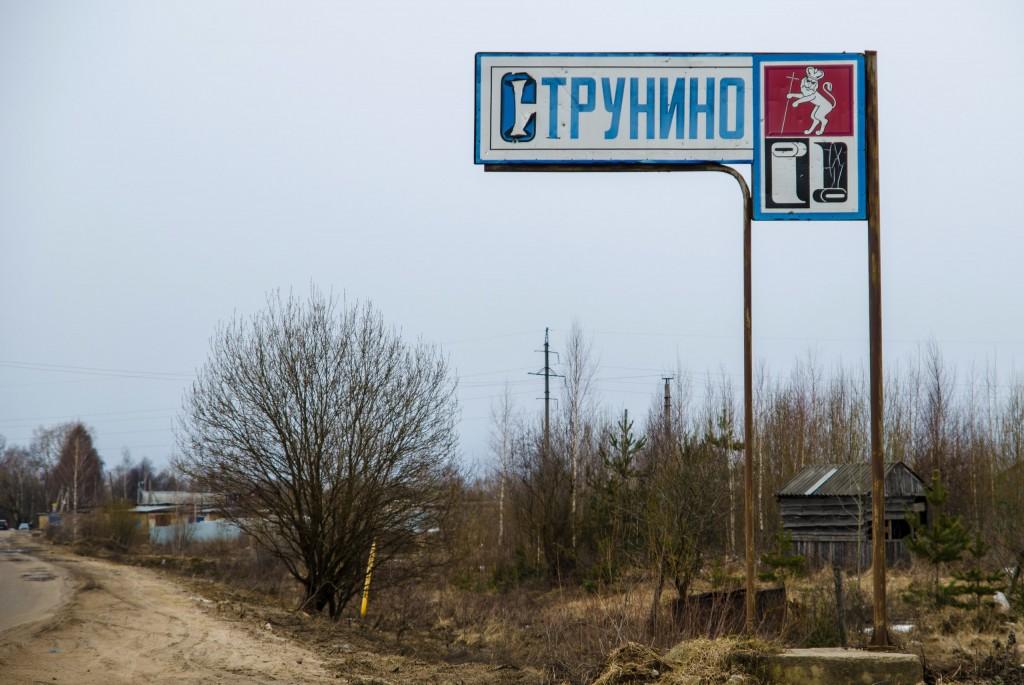 Струнино, Александровский район 01