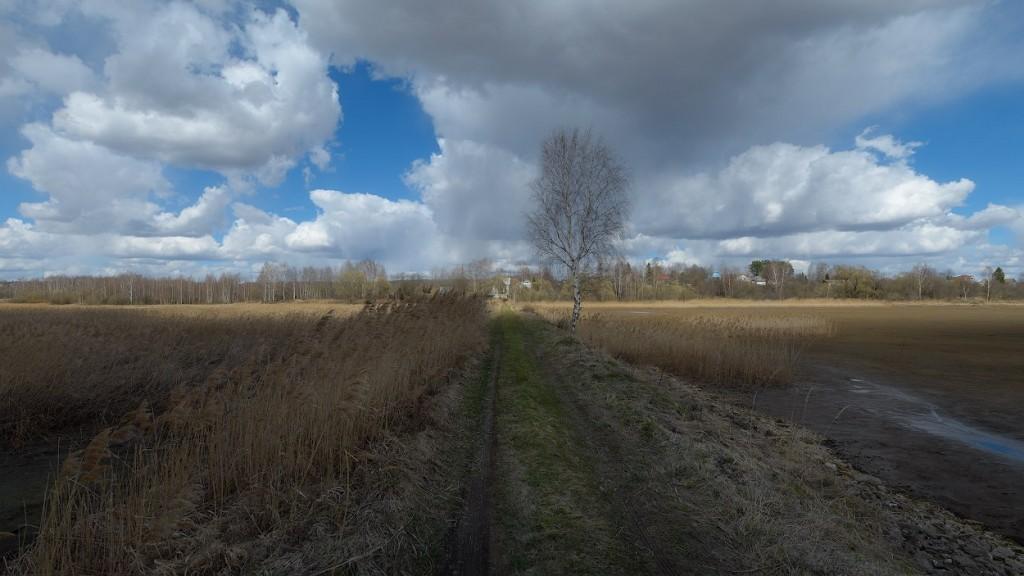 деревня Кочуково, Собинский р-н