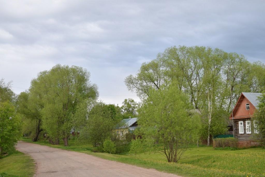 Деревня Кучки, Юрьев-Польский район 03