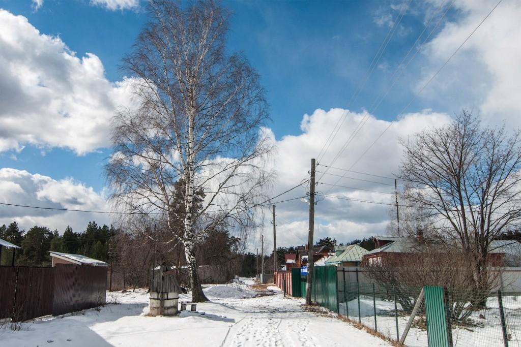 Деревня Новое Перепечино, Петушинский район 04