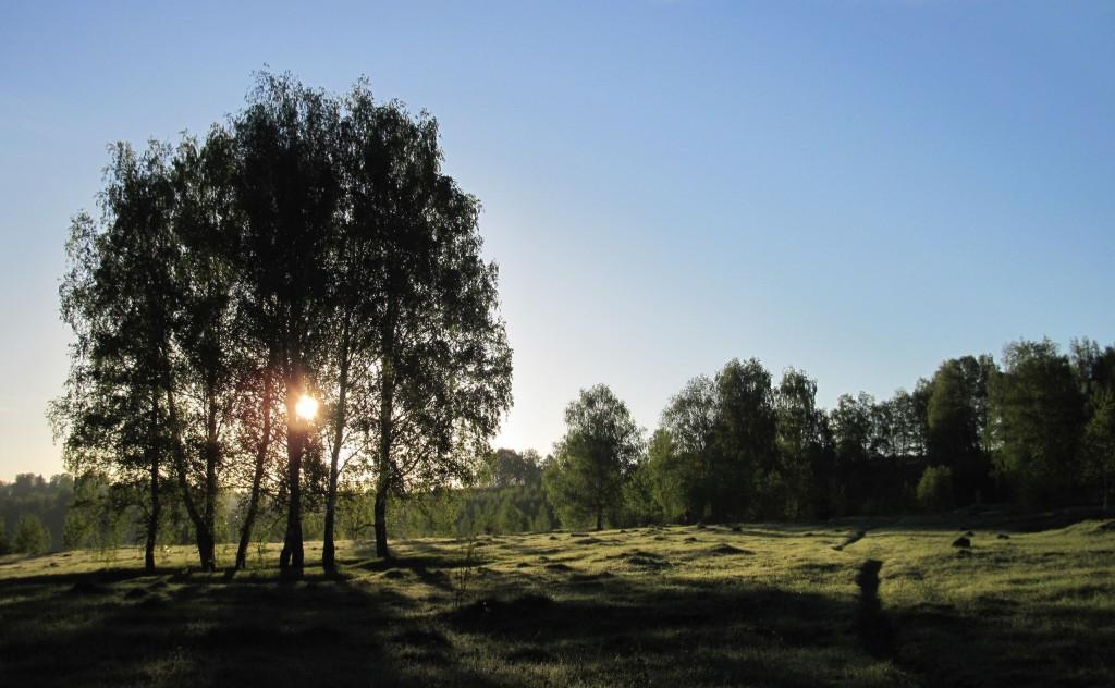Морозное майское утро в Вязниках 03