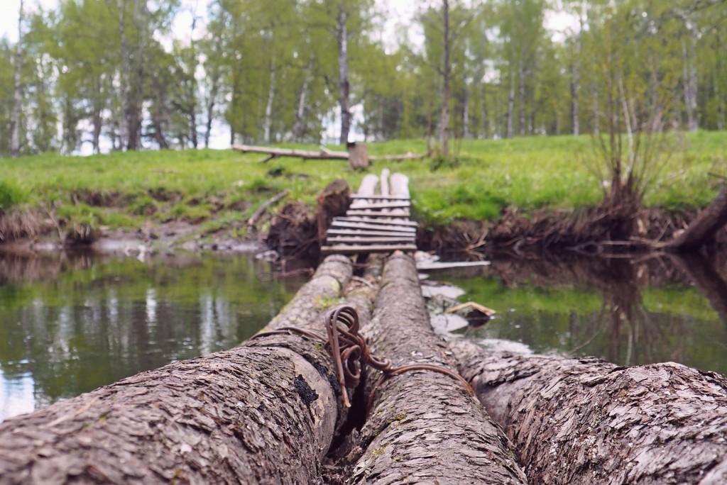 Рекреация зоны вдоль реки Нерехты 04