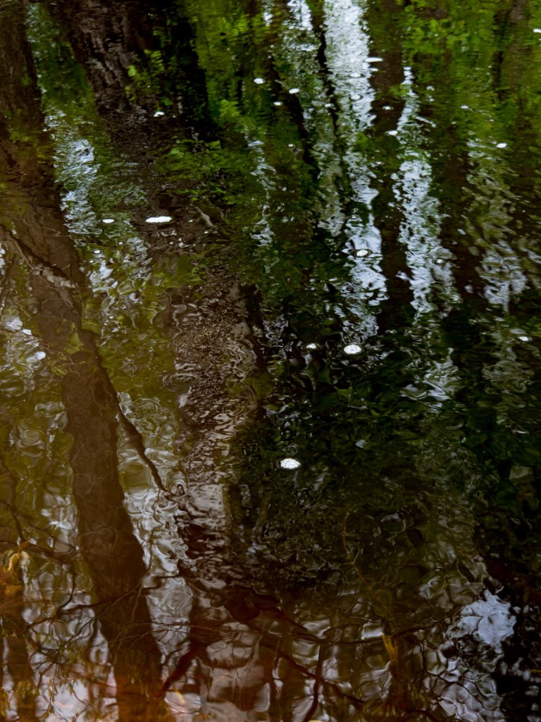 Слияние чёрных вод Шитки и красных вод безымянного ручья 02