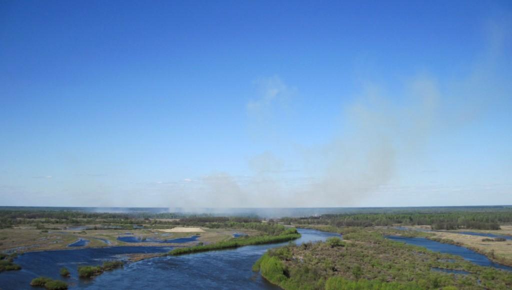 Травяной пожар за Клязьмой около Вязников 02