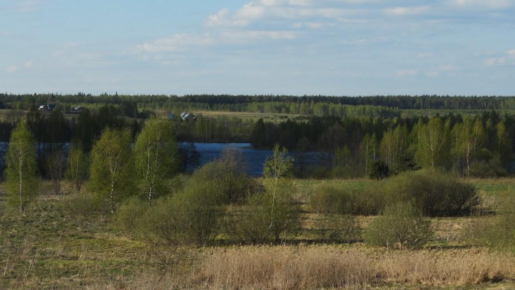 деревня Никитино, Судогодский р-н