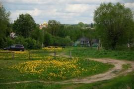 деревня Рябиновка, Камешковский р-н