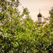 Красоты России — Церковь Покрова На Нерли