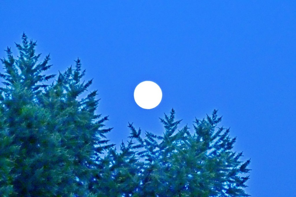 Луна над Владимиром 02