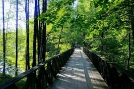Мост ведущий к западной проходной МПЗ, Вербовский