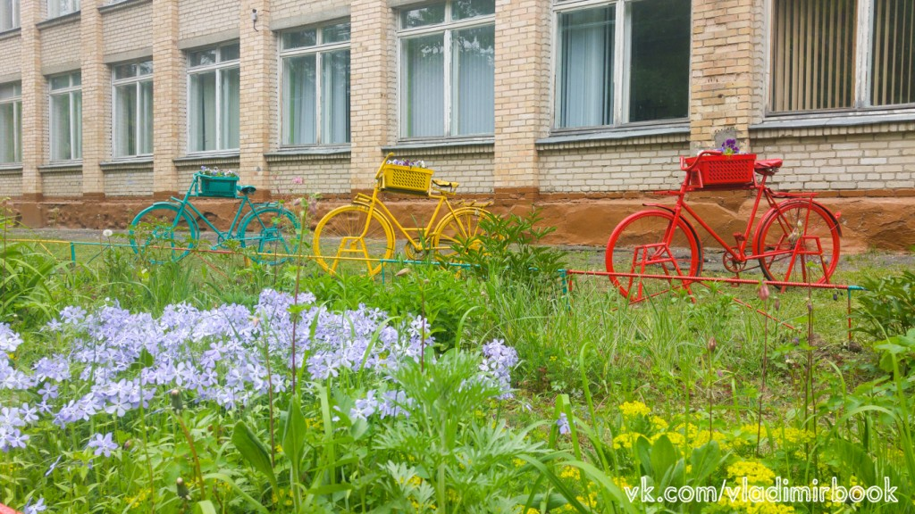 Цветы у школы 18, Вербовский